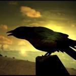 Ворон в славянской мифологии