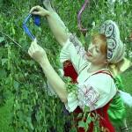 Семик  или Зеленые святки  (20 июня)