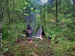 vizivanie-v-lesu