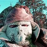 Выживание в сильные морозы