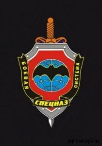 Боевая система Спецназ