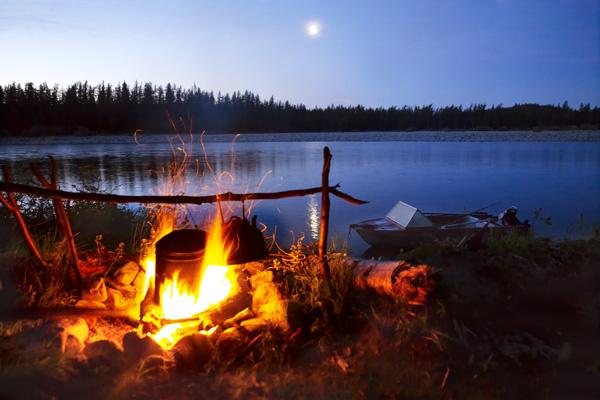 Поход в лес или лучший отдых на природе