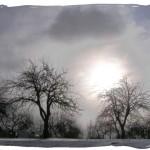 Троян Зимний (18 февраля)