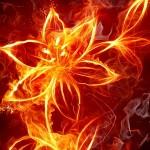 День Огненного Волха (14 сентября)